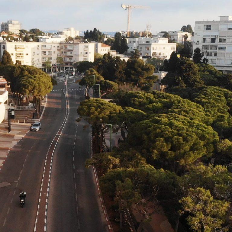 Carmel Center, Haifa